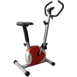 Bicicleta Fitness mecanica Fittronic 100B (Rosie) imagine