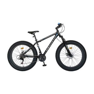 Fat Bike imagine