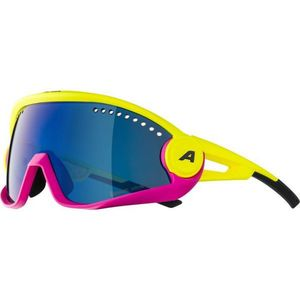 Alpina Sports 5W1NG CM - Ochelari de soare unisex imagine